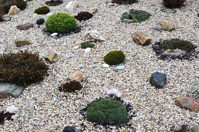 kamínky na skalce