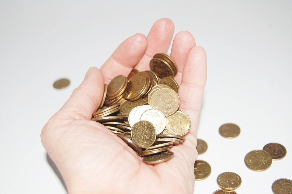 mince v hrsti